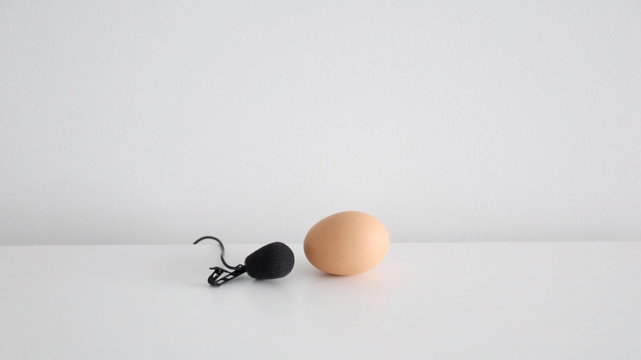 brown egg and microphone