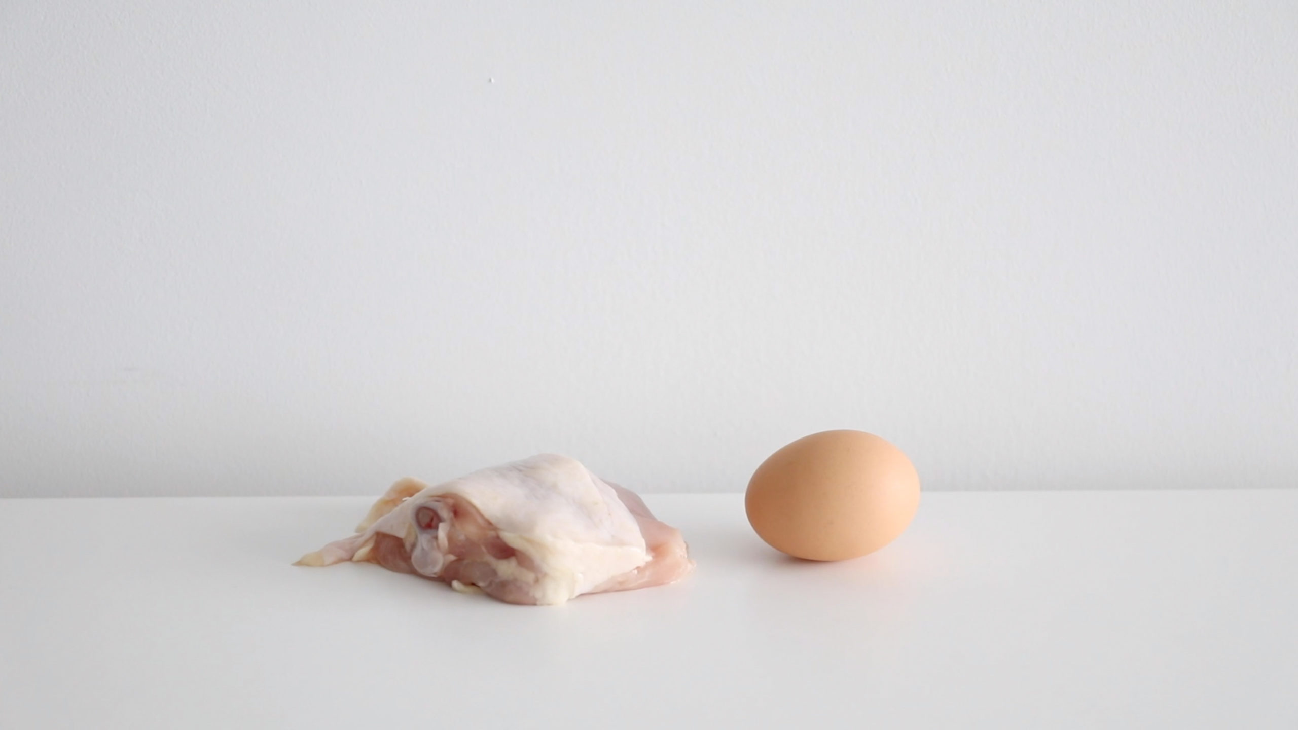 brown egg and piece of meat