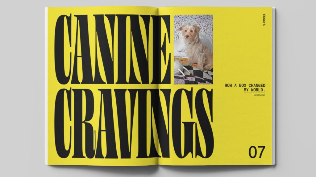 zra Lee magazine design - Wag & Bone - canine cravings