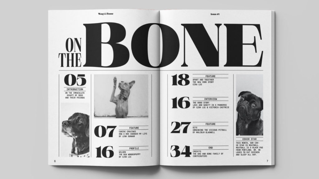 zra Lee magazine design - Wag & Bone