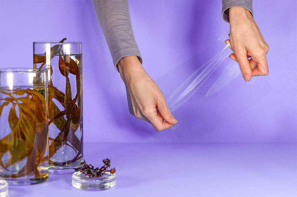 """Julia Marsh """"Sway"""" two hands holding plastic wrap made from seaweed with two glass jars of seaweed"""